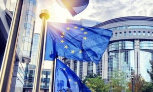 Grants – the European Union's Response in the Fight Against the COVID-19 Pandemic