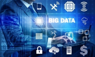 Challenges and Trends for the Incorporation of Big Data in the Accounting Profession: From the Traditional Approach to the Future Professional Accountant
