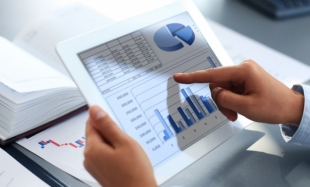 Comparative Analysis Regarding the Financial and Financing Structure of Limited Liability Companies
