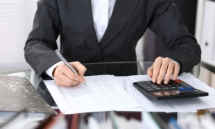 Professional and Transversal Accounting Competences (I)