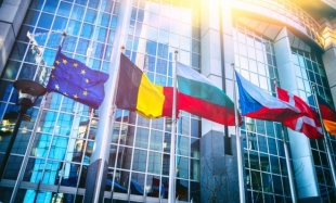 Direct Taxation in the European Union Countries (I)