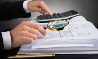 Internal Audit (II)
